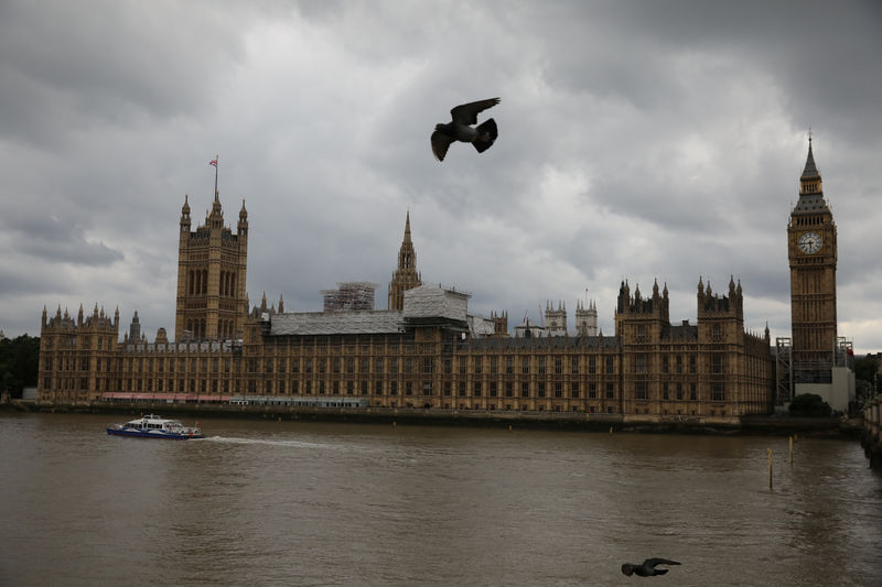 © Reuters. FILE PHOTO: Birds fly past the Houses of Parliament, in central, London