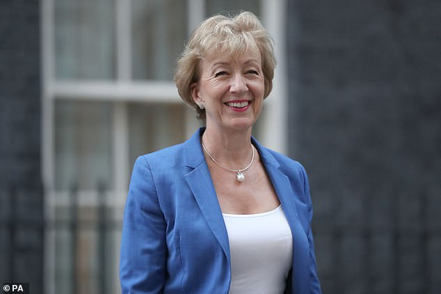 'I am not entirely reassured that Andrea Leadsom has been talking to Advent to extract reassurances over our national interest if it takes over Cobham,' says R. Sunderland