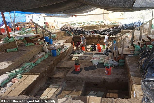 Experts suggest that people lived in the area 16,000 years ago, a whole millennium before previously thought. They made the conclusion after stone tools and other artefacts were unearthed at an archaeological dig at the Cooper's Ferry site in Idaho (pictured)