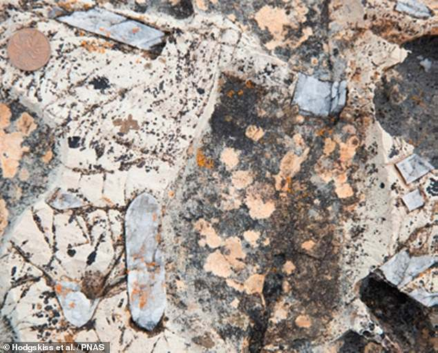 Studying oxygen, sulphur and barium isotopes in the rock samples, pictured, the researchers found that the Earth's biosphere — the regions of the planet occupied by life — underwent vast changes beginning around 2.4 billion years ago