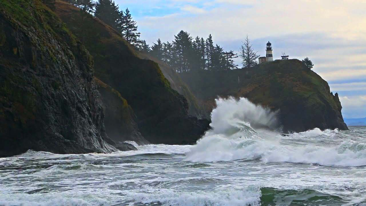 Powering bulbs with clean energy from waves could be a reality in the near-future.