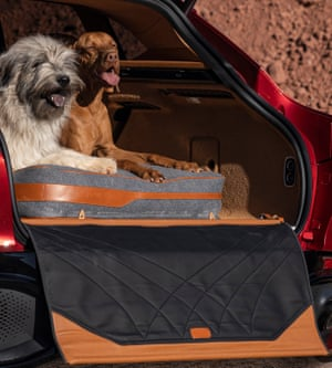 Pet dogs sit in the new DBX. Aston Martin aims to make its SUVs more appealing to women and families.