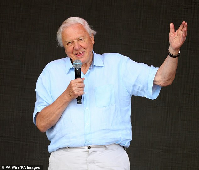 The world's population is beginning to change its attitude towards plastic waste and the damage it causes, broadcaster Sir David Attenborough has commented