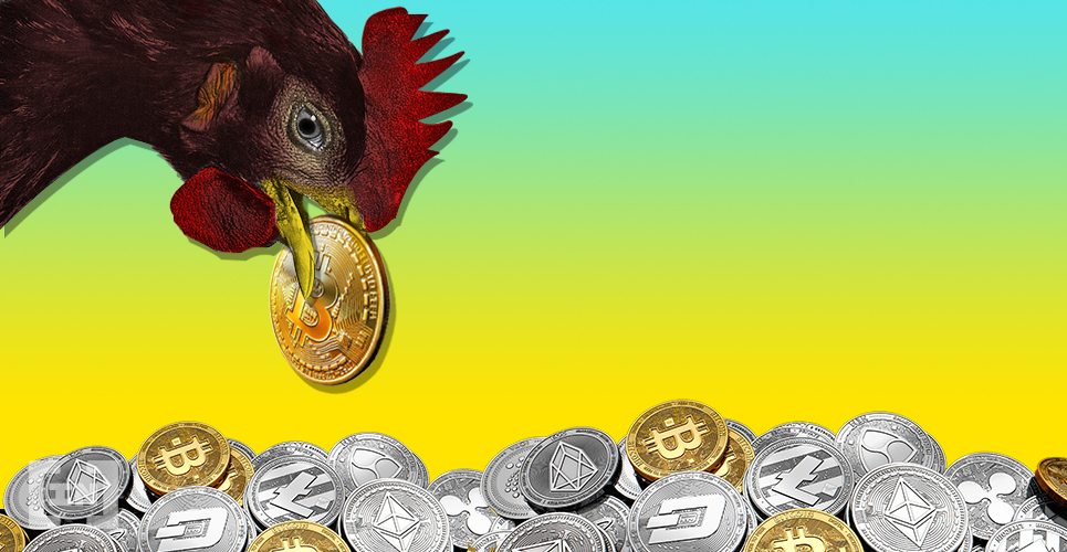 cryptocurrency fees
